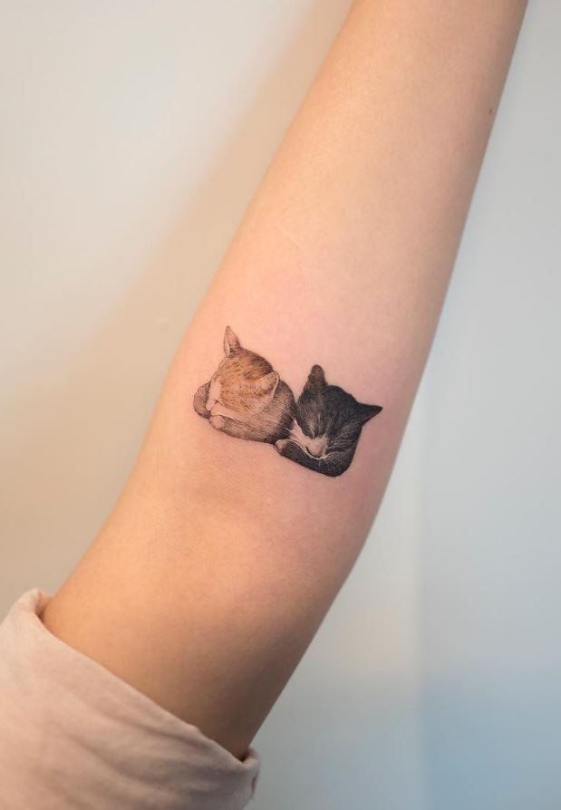 Cute Little Cats Tattoo