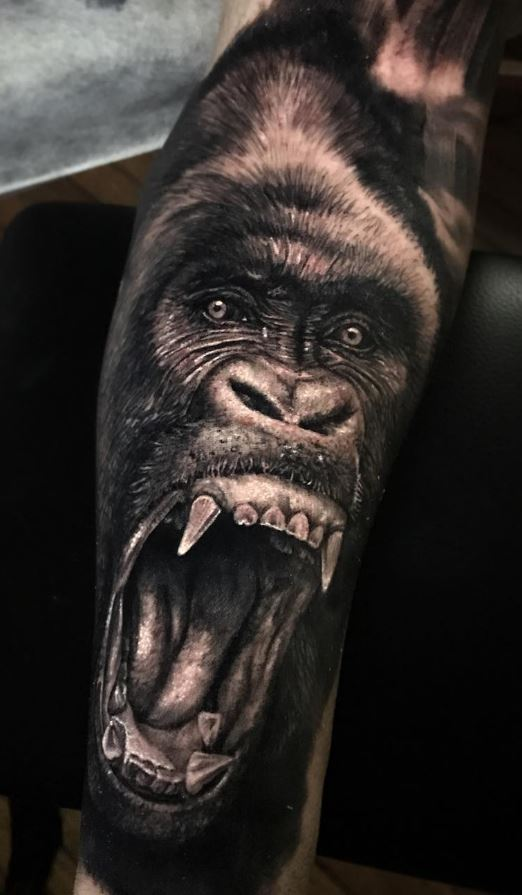 8933341ae Gorilla Tattoo - Doozy List