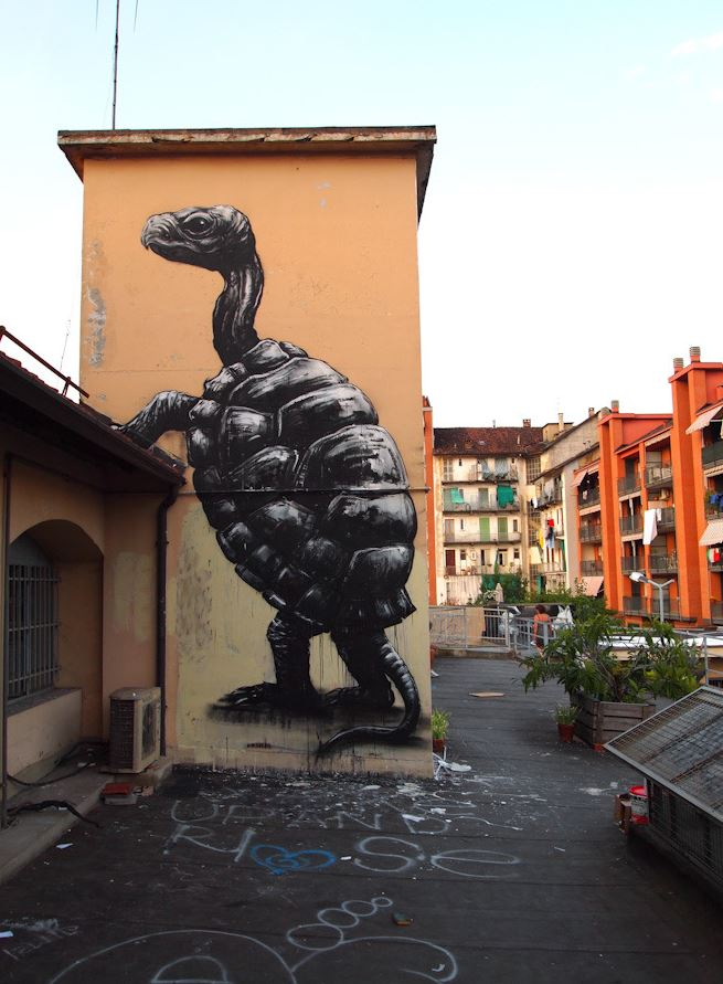 La Tortue, Torino