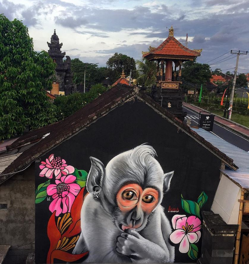 No monkey business in Bali - Indonesia