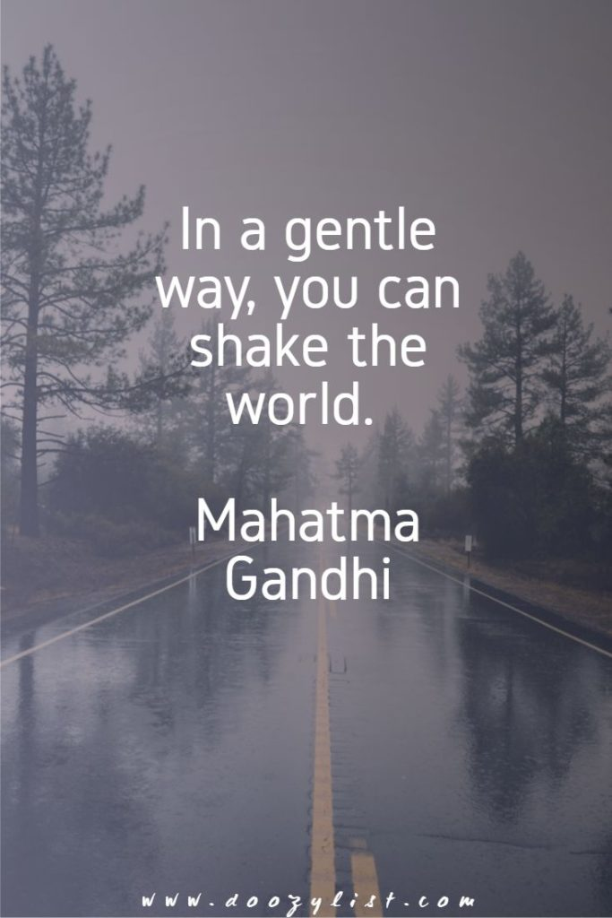 In a gentle way, you can shake the world. Mahatma Gandhi