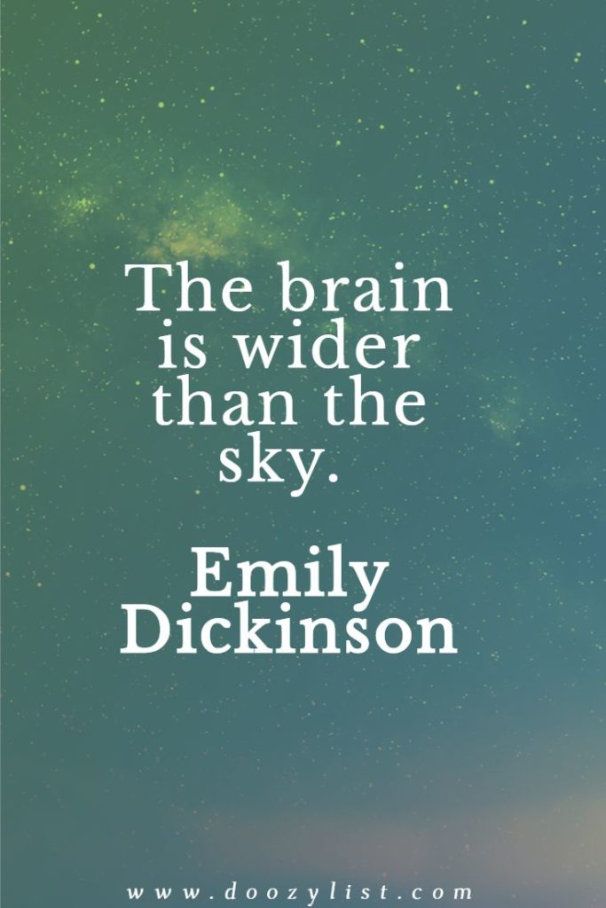 The brain is wider than the sky. Emily Dickinson