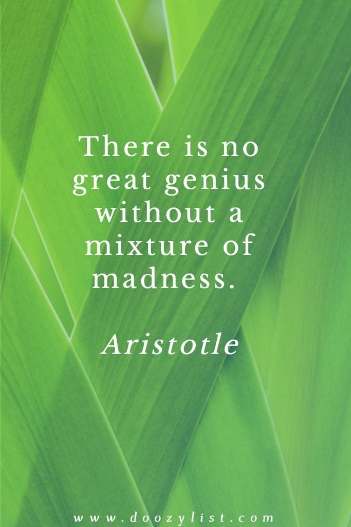 There is no great genius without a mixture of madness. Aristotle